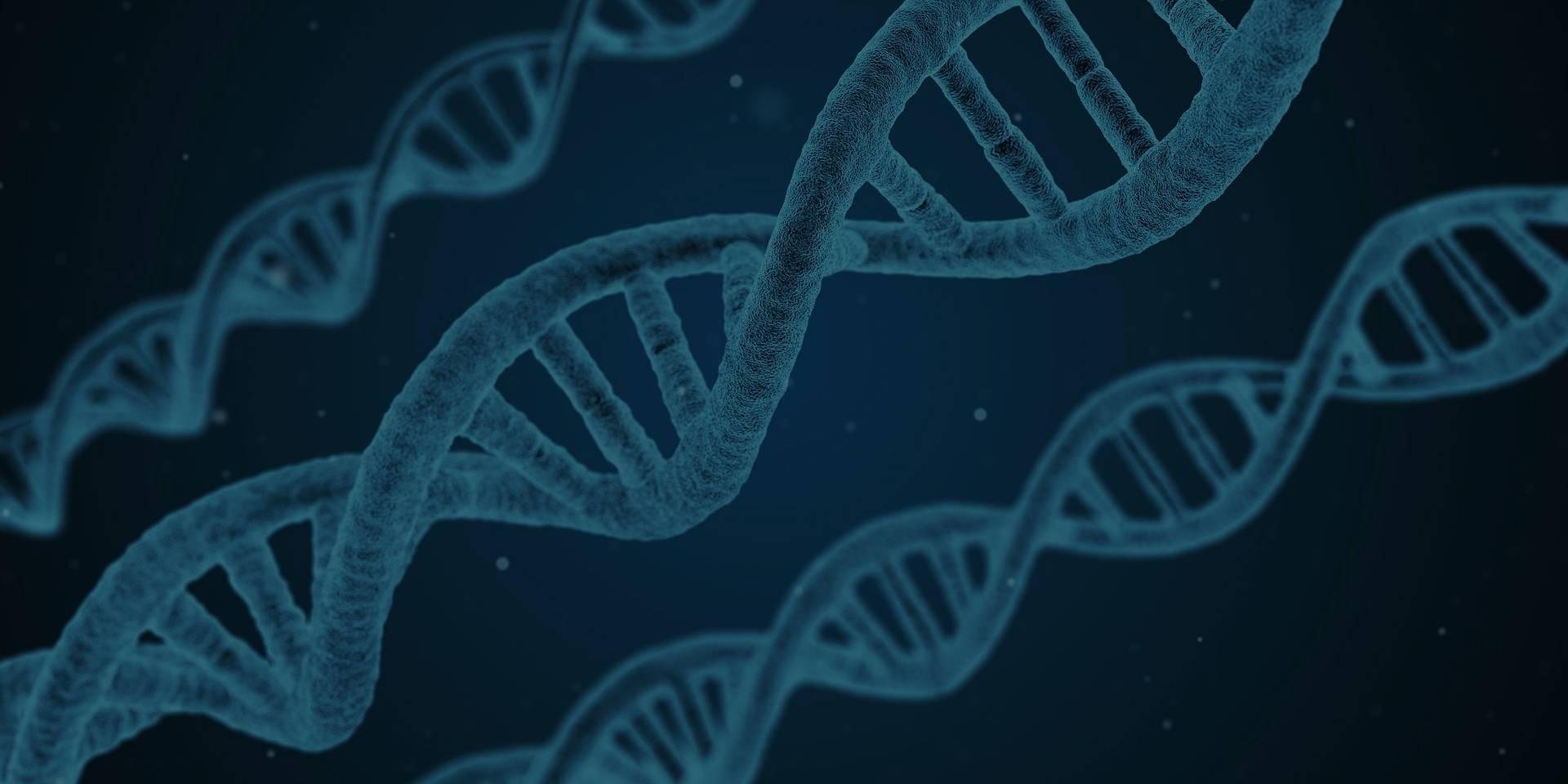 Генетический анализ при лечении рака